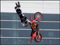 Ultimate X Photo 4