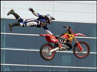 Ultimate X Photo 5