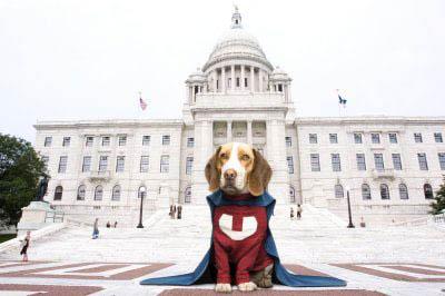 Underdog Photo 2 - Large