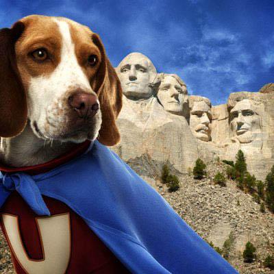 Underdog Photo 13 - Large