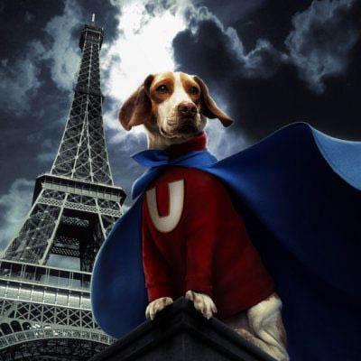 Underdog Photo 22 - Large