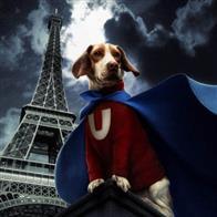 Underdog Photo 22