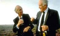 waking ned devine Photo 3