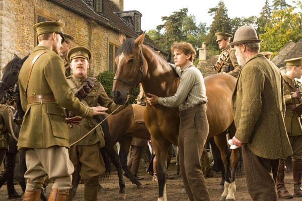 War Horse Photo 7 - Large