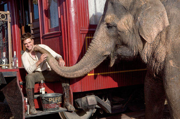 Water for Elephants Photo 2 - Large