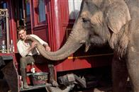 Water for Elephants Photo 2