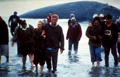 Whale Rider Photo 6 - Large