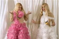White Chicks Photo 9
