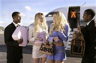 White Chicks Photo 15