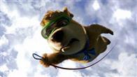Yogi Bear Photo 17