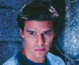 David Boreanaz Photo